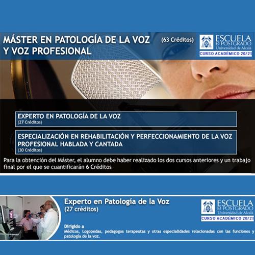 Ponente del máster en patología de la voz y voz profesional